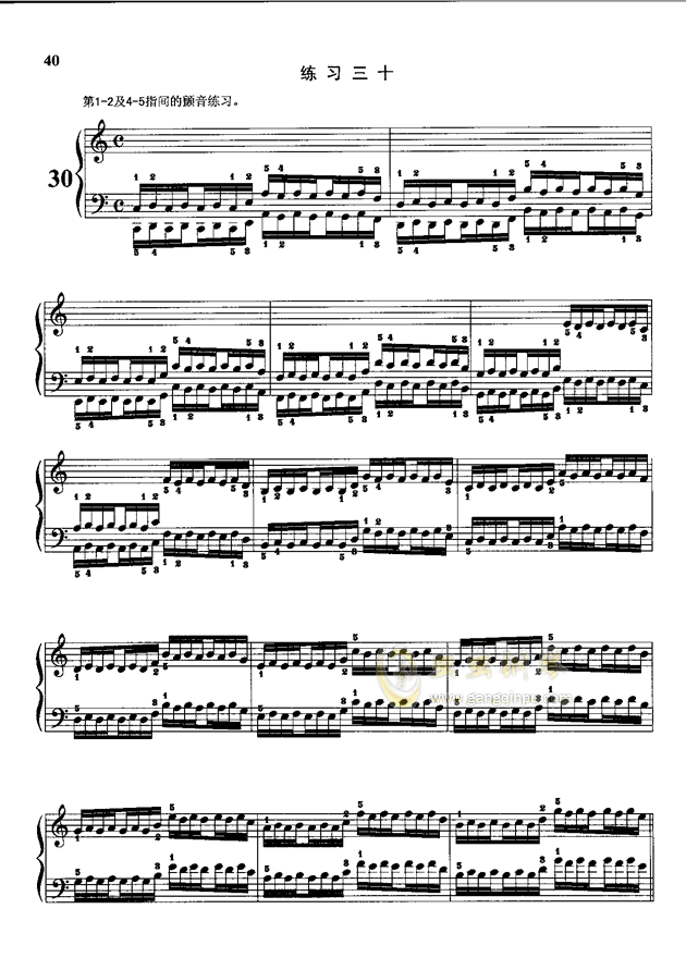 哈农曲简谱_哈农第三条钢琴谱简谱
